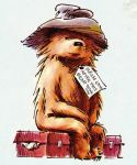 Paddington Bear-1 (1)