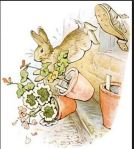 Peter Rabbit-3
